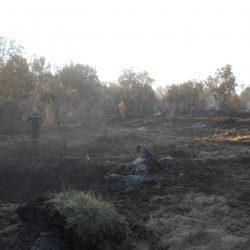 Les risques d'incendies: quelles actions conduire pour protéger un territoire forestier.